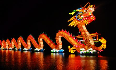 Image to show a traditional celebration of dragons during Chinese New Year