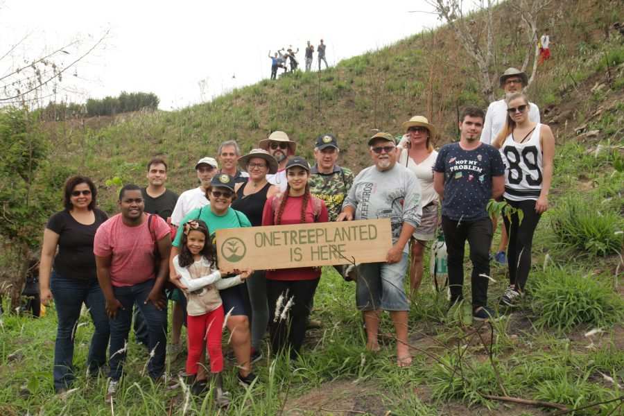 One Tree Planted charity organisation committed to being more environmentally conscious by planting trees to replenish natural habitats